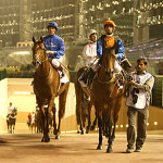 Horse Racing in UAE
