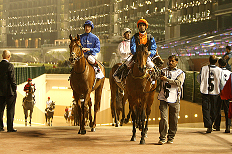Horse Racing In Uae Uae Style Magazine