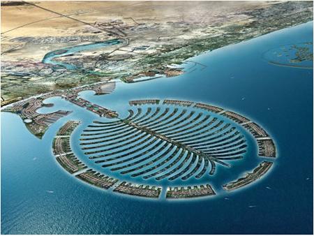 Palm Deira