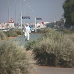 Abu Dhabi welcomes its Native Plants