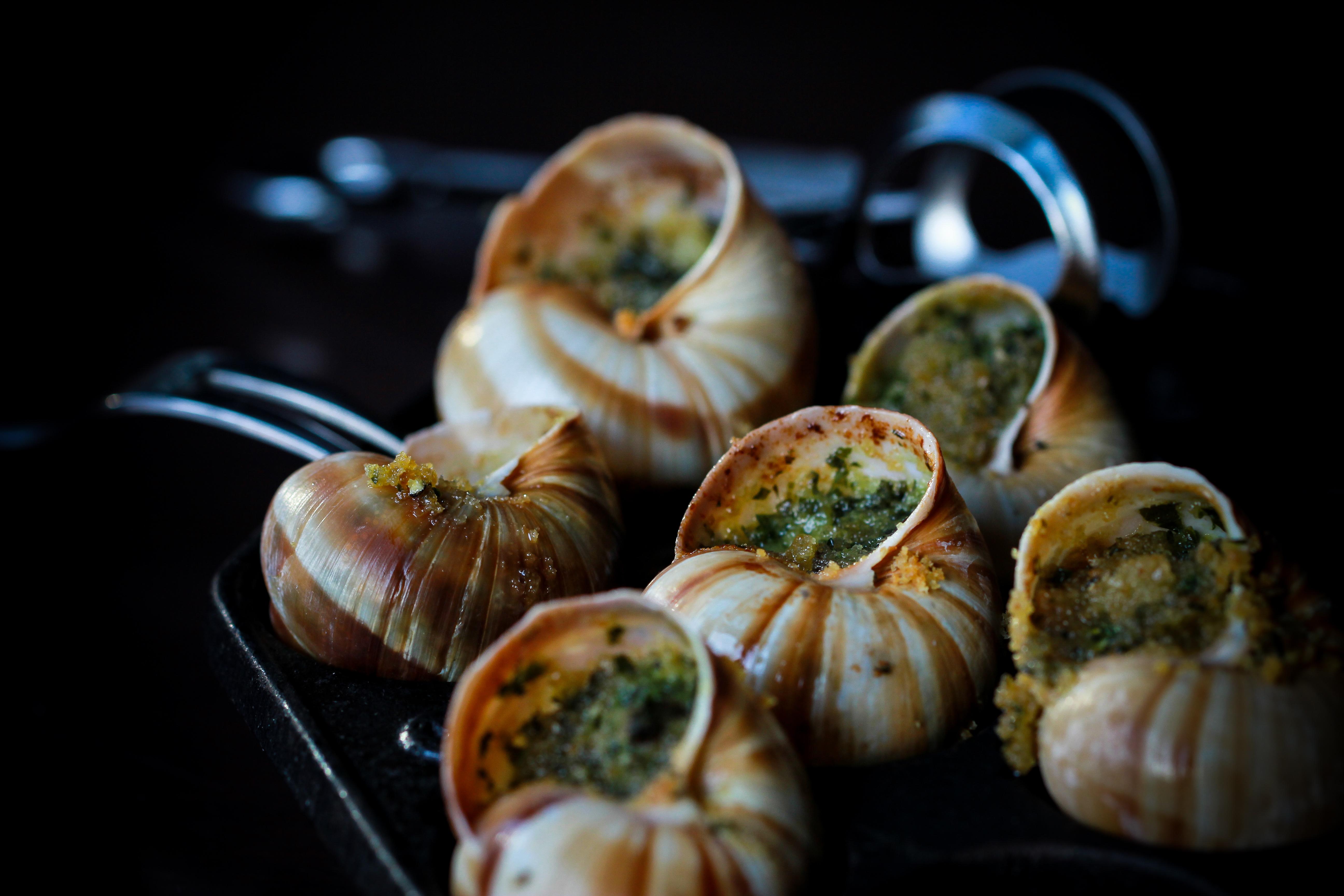 Escargots de Bourgogne 4