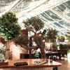 'TREEHOUSE TURNS GREENHOUSE' THIS SUMMER