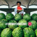 #FindWatermelons #FindSALT