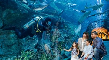 Visit Dubai Aquarium & Underwater Zoo  and get 50% off Unlimited Pass at VR Park