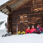 Winter highlights in the snowy landscape of Vaud, Switzerland